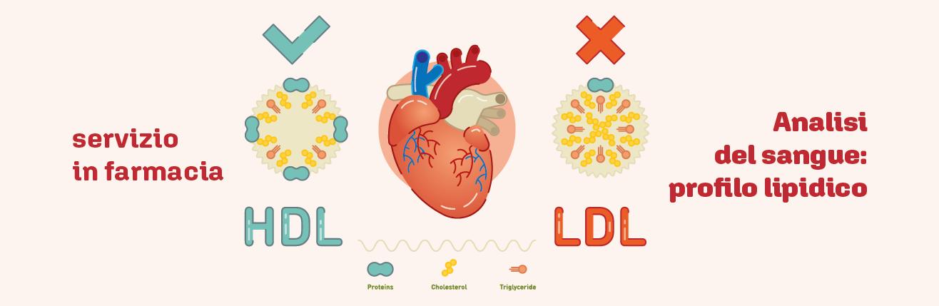 Analisi del sangue: profilo lipidico